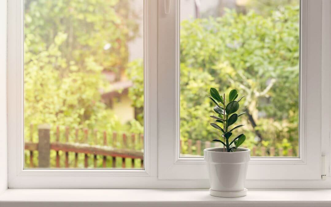 Reasons to Replace Your Windows in the Summer